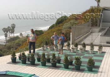 plant chess sets